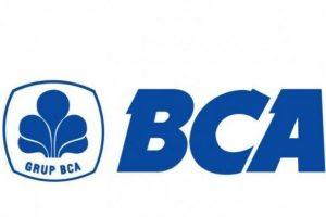 Cara Top Up OVO Via M-Banking BCA Mudah Tidak Ribet